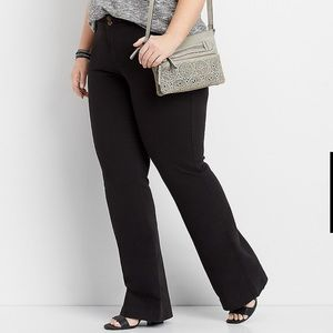 Maurices plus size black chino bootcut pants- Long